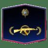 MG 2020 Medal Account